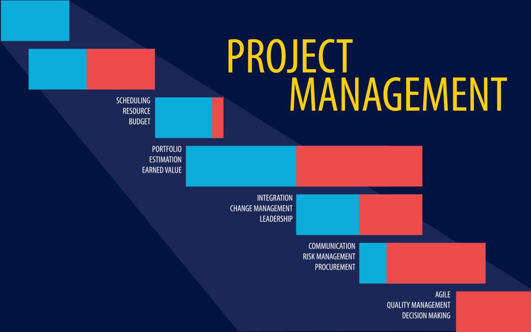 ms in business analytics and project management